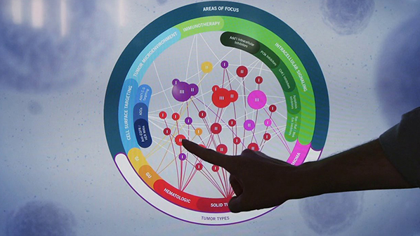 Attendee interacts with interactive data visualization touchscreen